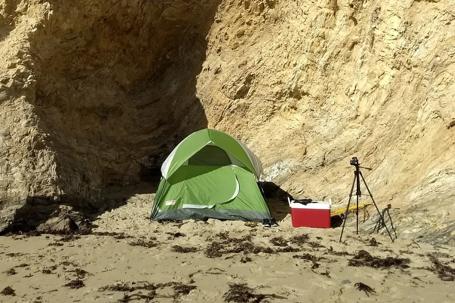 Want To Camp On The Beaches In Oregon? Think Again - Small ...